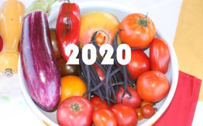 New Year's Resolution: Eat Healthy, Support Local Farmers, Protect Land and Water
