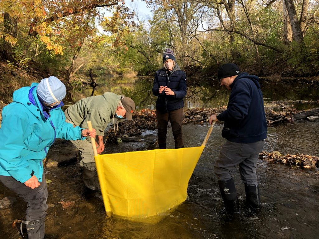 volunteers collecting invertebrates in Squaw Creek with a kick-net