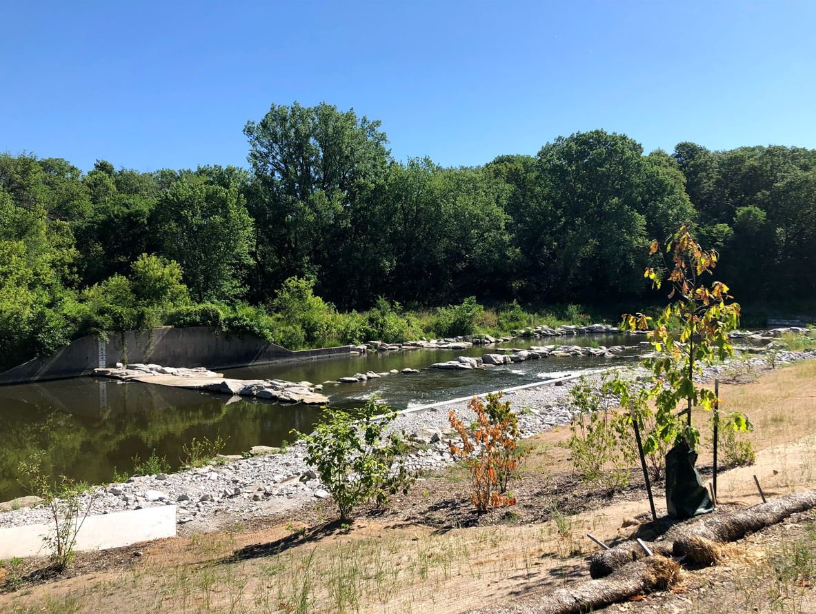 The South Skunk River